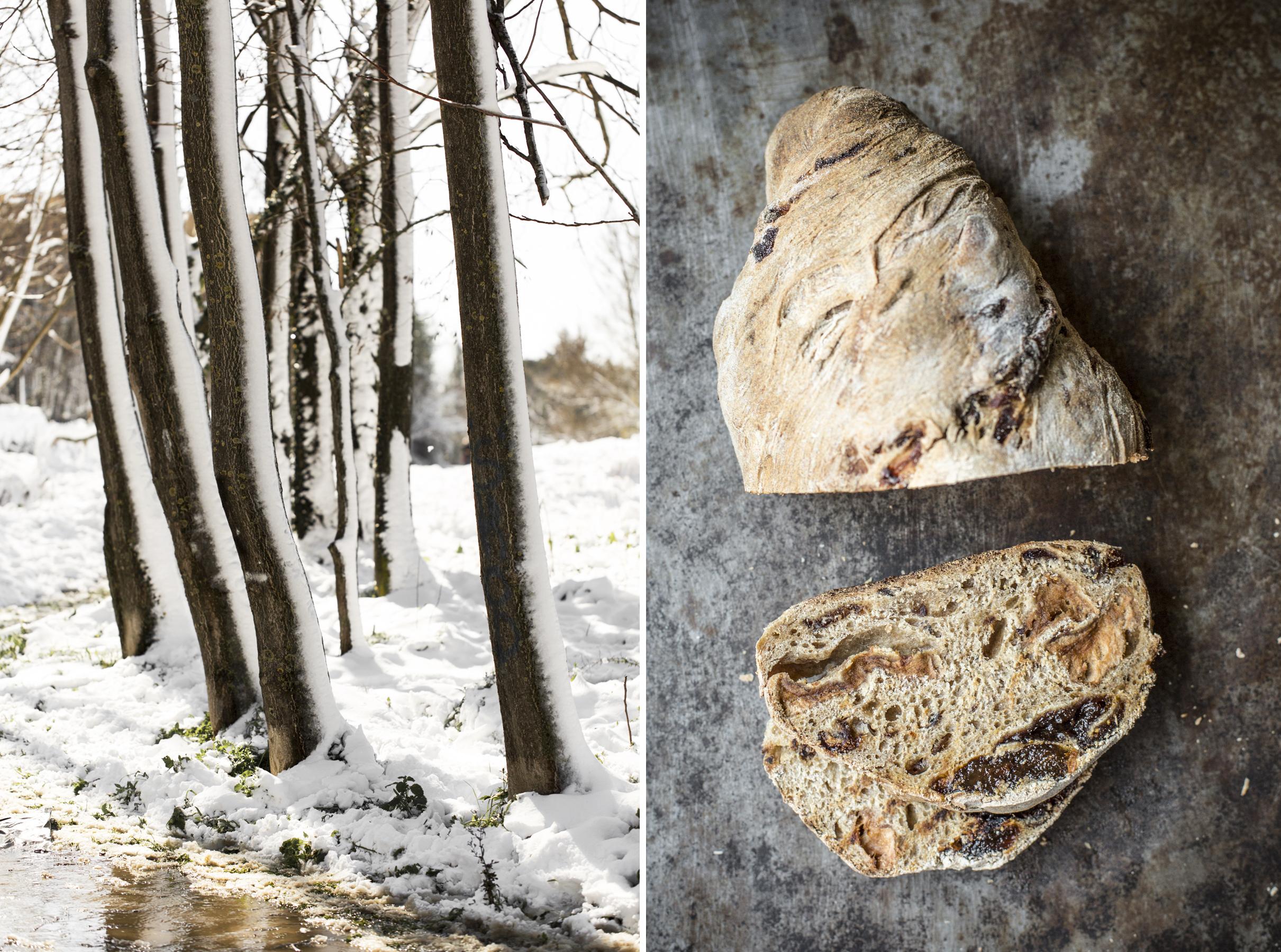 Pane integrale miele frutta secca e neve - Vaniglia storie di Cucina